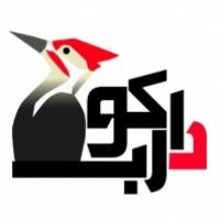طراحی سایت و سئو دارکوب